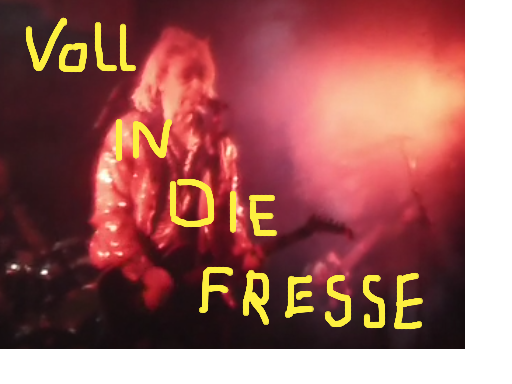 Video-VollindieFresse