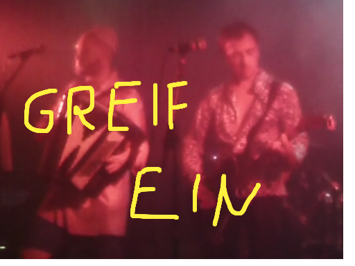 Video-Greifein